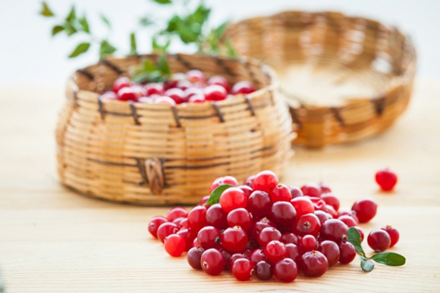 Журавлину називають головною зимової ягодою не тільки дієтологи, сучасні лікарі так само визнають цілющі властивості журавлини, правда, вважають її не