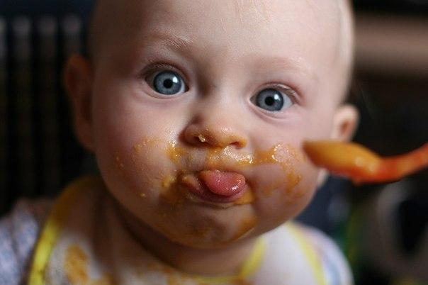 Які продукти збагачені тими елементами, що живлять дитячий мозок?Цікаво?Читайте далі.