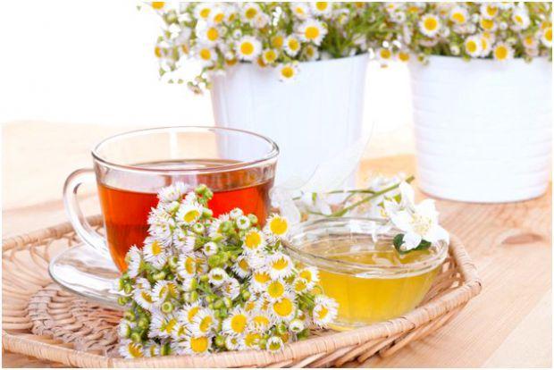 Настій ромашки надзвичайно корисний і здатний замінити для майбутньої мами звичайний чай, а заодно і позбавити багатьох неприємних проблем, пов'язаних