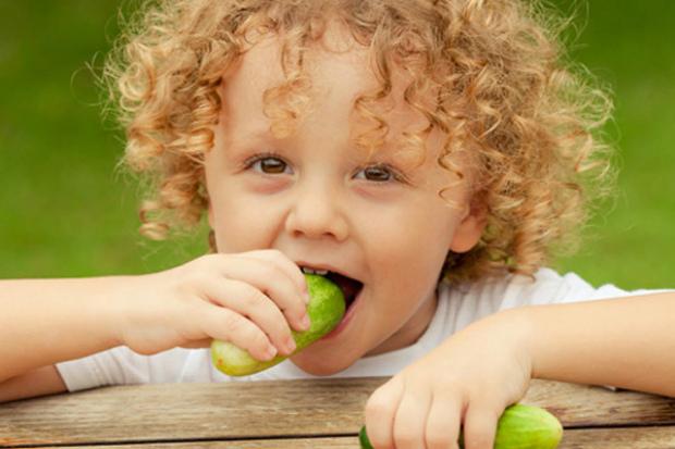 Також з нашої статті ви дізнаєтеся про переваги і недоліки запровадження огірка в прикорм грудничку, з якого віку можна давати цей овоч дитині. Повідо