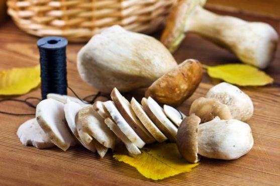Фахівці з університету Джонса Хопкінса протягом року тестували нову грибну дієту. Результати виявилися вражаючими. Гриби найбільше за своїм складом сх