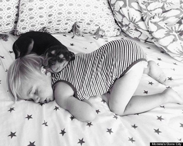 Тео і Бо - наймиліші соні на світі.