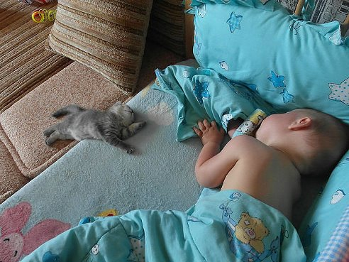 Американські дослідники зійшлися на думці, яка ж поза найкорисніша і найблагородніша для сну.