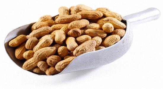 Офіційне дослідження у Великобританії показало, що у мам, які регулярно вживають в їжу арахіс, народжуються діти з дуже низьким ризиком виникнення але